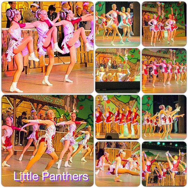littlePanthers1